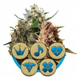 Medical Mix-Medical