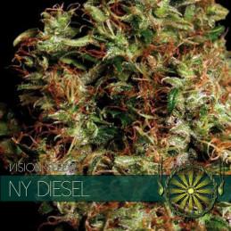 Ny Diesel - Vision Seeds - feminizovaná semena