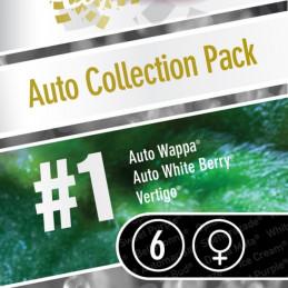 Auto Collection pack 1 - Paradise Seeds - mix autofloweringu