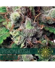 Vision Kush AutoFem - Vision Seeds - autoflowering