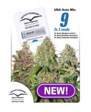 USA Autoflower Mix - Dutch Passion - autoflowering mix - 9 ks