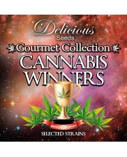 Gourmet Collection - Cannabis Winner Strains 1- Delicious Seeds - Feminizovaná semena - 9ks