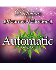 Gourmet Collection - Automatic Strains 1 - Delicious Seeds - Samonakvétací semena - 9 ks