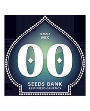 Female Mix - OOseeds - feminizovaná semena