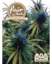 Fair Seeds Outdoor Mix - autoflowering