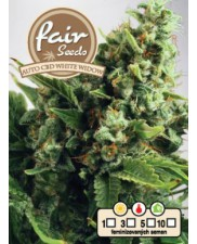 Auto CBD White Widow - Fair Seeds - léčebná autoflowering semena