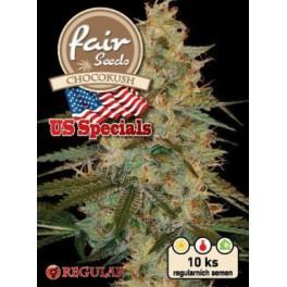 Chocokush - Fair Seeds - Regular nefeminizovaná semena - 10 ks