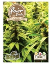 Indoor mix - Fair Seeds - feminizovaná semena
