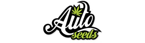 Autoflowering - Samokvetoucí semena