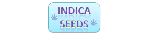 INDICA Seeds