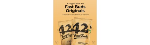 Fast Buds - Original Collection Auto