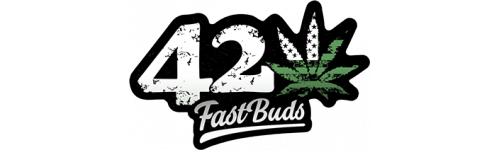 Fast Buds - Premium Collection Auto